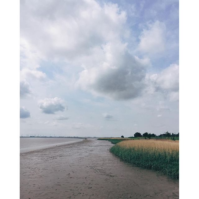 One week ago. Family short trip.--#nordfriesland #familytrip #northsea #vsco #nature #river #clouds #outdoors